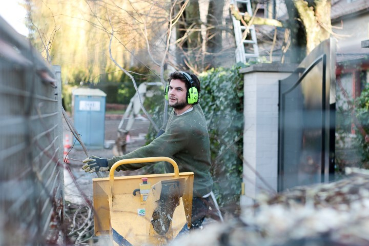 Virgin forest bruxelles brabant wallon entretien jardins for Entretien jardin woluwe